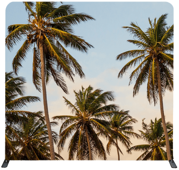 Miami Backdrop